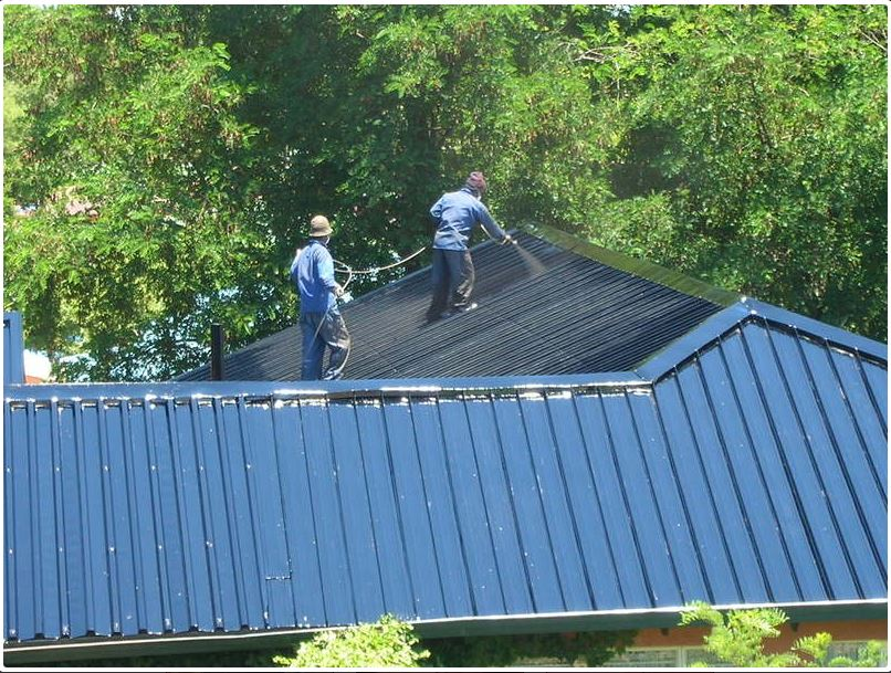 Lotus River Roof Painting
